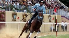 Quintana Foligno